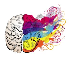 vector creativity concept - brain illustration